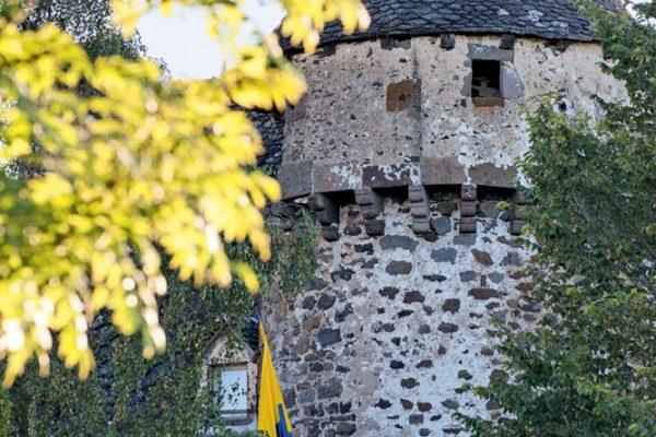 Château de la Trémolière (15)