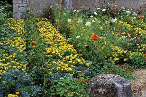 Chaumont 1994 La cour de la ferme Paysagiste: Eric Ossart.Festival des jardins de Chaumont-sur-Loire 41 France