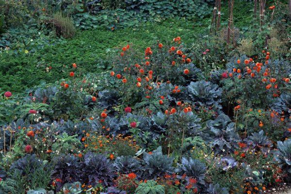 Chaumont 1995 La cour de la Ferme Paysagiste Eric Ossart.Festival des Jardins de Chaumont sur Loire 41 France