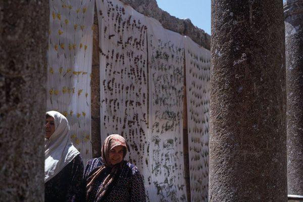 Landart Mouchabbak syrieCréation: Ossart-Maurières